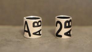Die deutschlandweit einheitlichen Kennringe mit schwarzen Zeichen auf aluminiumfarbenem Hintergrund: der erste Buchstabe (links) oder Zahl (NRW, rechts) steht aufrecht lesbar über die gesamte Ringhöhe (für die Wanderfalken aus Baden-Württemberg wird dies zunächst ein 'P' sein), die beiden folgenden Buchstaben sind um 90° Grad gedreht und von unten nach oben abzulesen. Die Kombination ist zweimal auf dem Ring zu sehen.