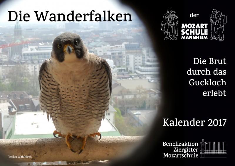 Wanderfalken-Kalender